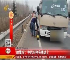 啥情况?中巴车停在高速上