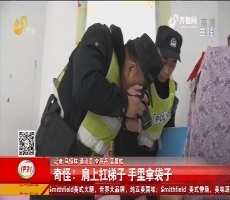 成武:邻居搬梯子 翻院墙盗窃