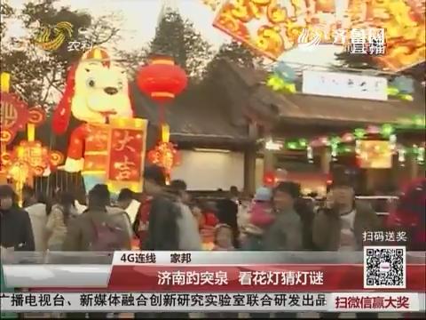 【4G连线】济南趵突泉 看花灯猜灯谜