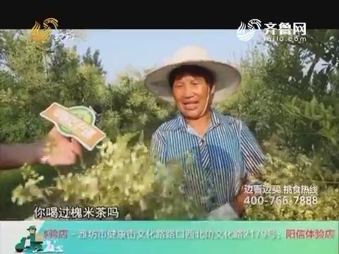 20180303《中国原产递》:槐米茶