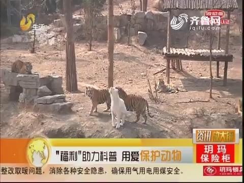"""济南:""""福利""""助力科普 用爱保护动物"""