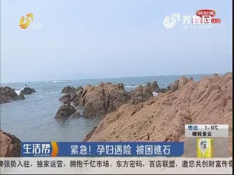 青岛:紧急!孕妇遇险 被困礁石
