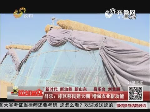 【新时代 新动能 新山东】昌乐:库区移民建大棚 增强农业新动能