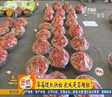 济南:草莓随机快检 农残是否超标?