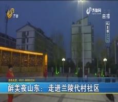 【4G直播】醉美夜山东:走进兰陵代村社区