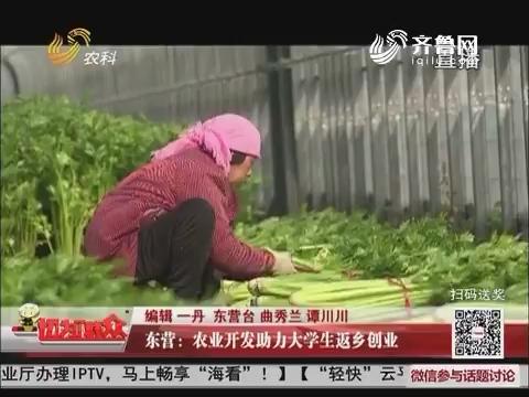 东营:农业开发助力大学生返乡创业
