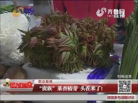 """【群众新闻】济南:""""贵族""""菜香椿芽 头茬来了!"""