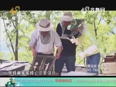 20180311《中国原产递》:徂徕山巢蜜