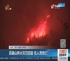 费县山林火灾已控制 无人员伤亡