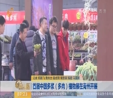 首届中国多浆(多肉)植物展在青州开展