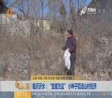 """【闪电新闻排行榜】临沂沂水:""""变废为宝"""" 小种子搞活山村经济"""