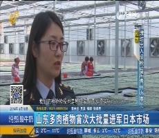 山东多肉植物首次大批量进军日本市场