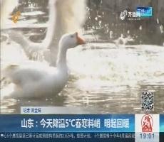 龙都longdu66龙都娱乐:今天降温5℃春寒料峭 明起回暖