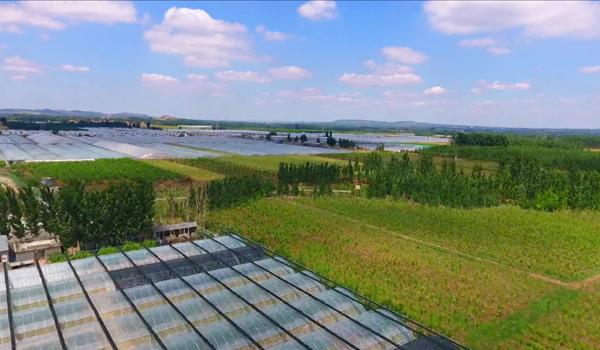 节水公益广告(农业篇)