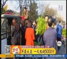 【凡人善举】淄博:芹菜大卖 一天热销5000斤