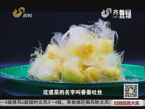 大厨教做家常菜:春蚕吐丝