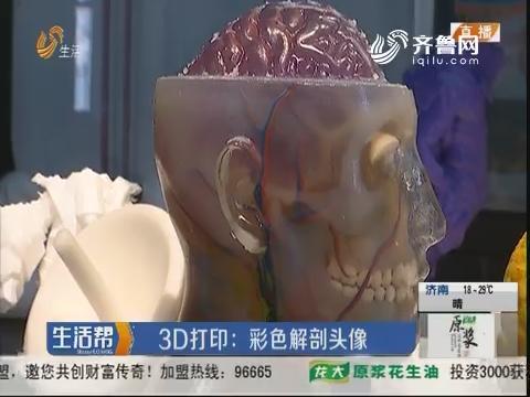3D打印:彩色解剖头像