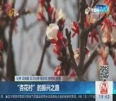 """济南:""""杏花村""""的振兴之路"""