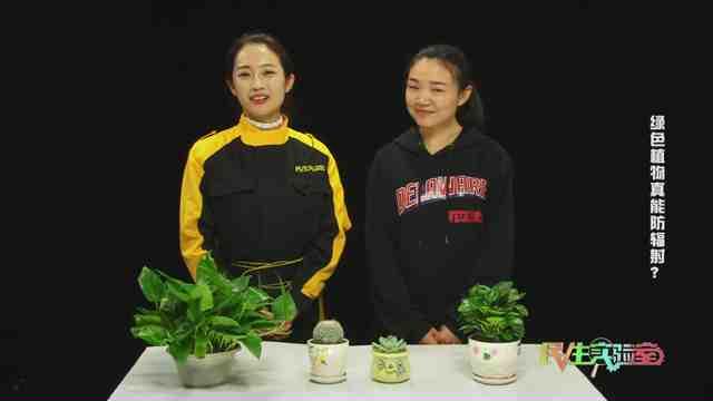 《民生实验室》:绿色植物可以防辐射吗?
