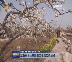 冠县第十三届梨园文化观光周启动