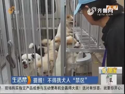 """济南:遛狗""""束犬绳""""不得超1.5米"""