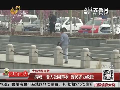 【大妈为您点赞】禹城:老人公园落水 警民齐力救援