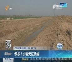 【重磅问政】缺水!小麦无法浇灌