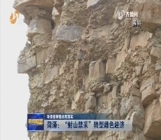 """【环保督察整改再落实】菏泽:""""封山禁采""""转型绿色经济"""