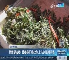 济南:野菜受追捧 香椿芽价格比刚上市时降幅明显