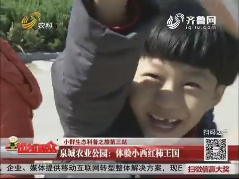 【小群生态科普之旅第三站】泉城农业公园:体验小西红柿王国