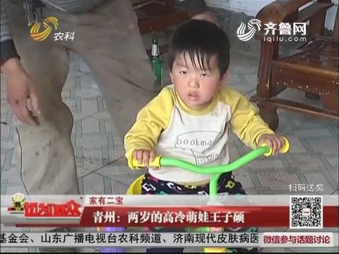 【家有二宝】青州:两岁的高冷萌娃王子硕