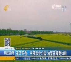 花开齐鲁:兰陵农业公园 油菜花海美如画