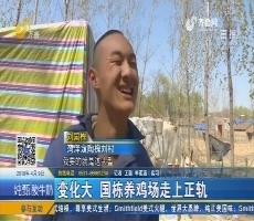 菏泽:变化大 国栋养鸡场走上正轨