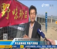 邹平:养孔雀被举报 养殖户求辟谣