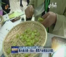 第六届兰陵(苍山)蔬菜产业博览会开幕