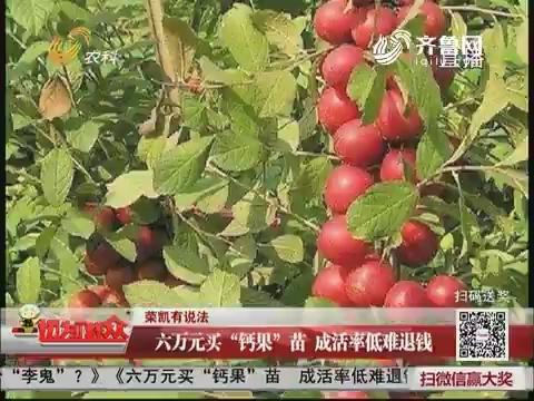 """【荣凯有说法】六万元买""""钙果""""苗  成活率低难退钱"""