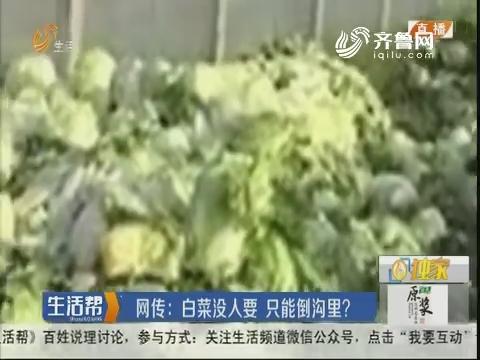 潍坊:网传 白菜没人要 只能倒沟里?