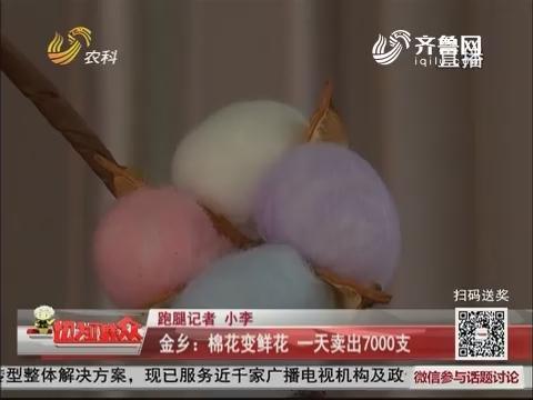 金乡:棉花变鲜花 一天卖出7000支