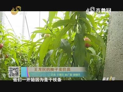 王龙民的桃子卖价高