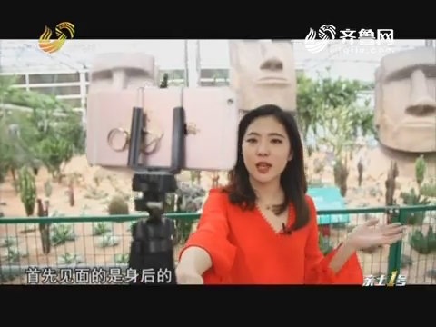 第十九届寿光菜博会特别节目:高源带你逛展厅