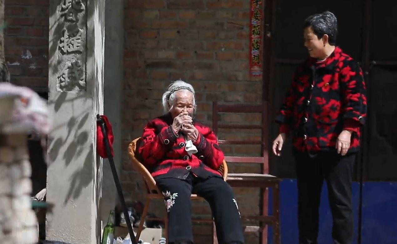 解密中国长寿之乡单县的长寿密码