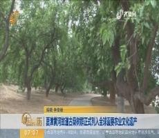 夏津黄河故道古桑树群正式列入全球重要农业文化遗产