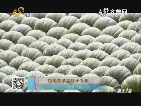 【第十九届寿光菜博会特别节目】她用蔬菜盖房十九年