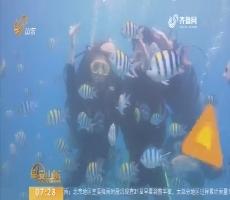 """新生活新体验——水底""""海草舞"""""""