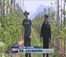 【推动乡村振兴 打造齐鲁样板】邹城:山区小镇的种树经