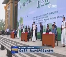 【推动乡村振兴 打造齐鲁样板】滨州惠民:苗木产业产值突破20亿元