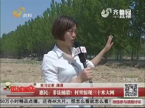 惠民:非法捕猎!村里惊现三十米大网