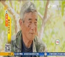 """滕州:不敢上山 村里出个""""山大王""""?"""