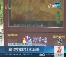 济南:雨后趵突泉水位上涨16厘米