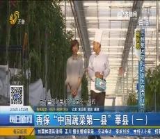"""再探""""中国蔬菜第一县""""莘县(一)"""